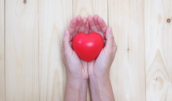charity community hands holding a red heart
