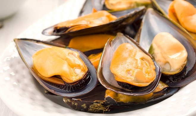 macro making natural mussels from Galicia, in tray